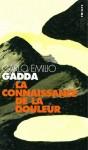 A propos de La connaissance de la douleur de Carlo Emilio Gadda, par Cyrille Godefroy