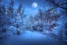 Une nuit de neige, par Imène Bensitouah