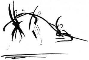 Nomade de la vacuité - Choix de textes III et IV