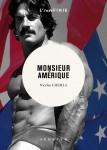 Monsieur Amérique, Nicolas Chemla (par Yann Suty)