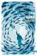 Aquarium David Vann (Gallmeister totem) - S. Guessous