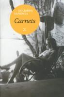 Carnets, Goliarda Sapienza (par Philippe Leuckx)