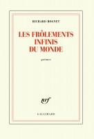 Les frôlements infinis du monde, Richard Rognet (par Philippe Leuckx)