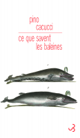 Ce que savent les baleines, Pino Cacucci