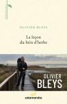 La leçon du brin d'herbe, Olivier Bleys (par Delphine Crahay)