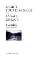 La Salle de jour, Don DeLillo