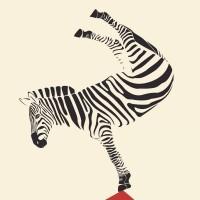Sans gouache, à grands traits (par Isabelle Morino)
