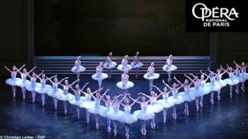 Les Moments forts (26) Le Lac des Cygnes à l'Opéra Bastille (par Matthieu Gosztola)