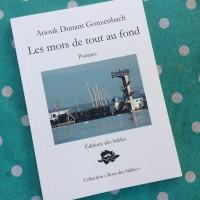 Les mots de tout au fond, Anouk Dunant Gonzenbach (par Marc Wetzel)