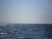 Je n'aime plusl'océan, par Christine Guinard