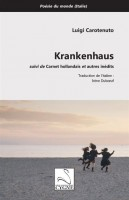 Krankenhaus suivi de Carnet hollandais et autres inédits, Luigi Carotenuto (par Philippe Leuckx)
