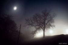le silence me surprend (par Khamylle-Abel Delalande)