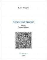 Depuis une fissure, Elisa Biagini