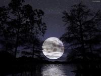 Amour de Lune