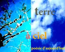 Nécessité de lire la poésie contemporaine ... (4/5)