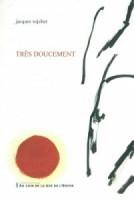 Très doucement, Jacques Sojcher (par Patrick Devaux)